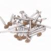 Colored Head Screws (Pack of 100)-25